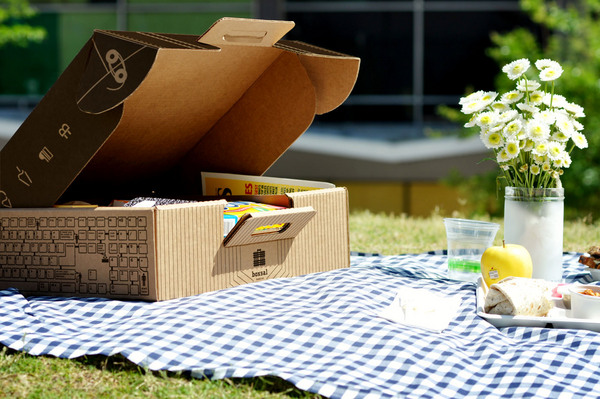 Boxsal_picnic_box_office_escape_on_blue_gingham_with_flowers-sixhundred