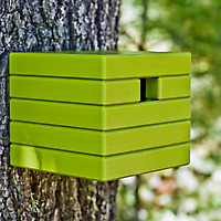 Green Loll Cube Birdhouse on tree