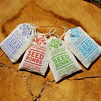 Seed Bombs by VisuaLingual 4