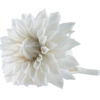 Porcelain Dahlia by Studio Klimenkoff 1
