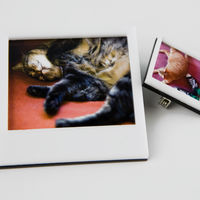 Instant Photo Frame Pins on Wantist
