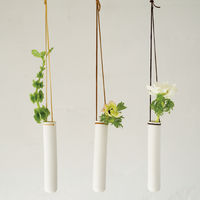 Hanging Test Tube Vase on Wantist