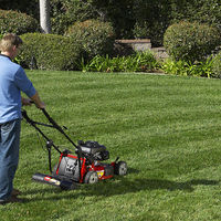 Lawn Striping System on Wantist