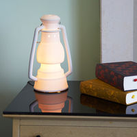 Talk of the Trails Lamp 2