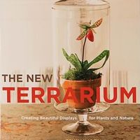 The New Terrarium on Wantist