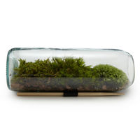 Moss Terrarium Bottle on Wantist