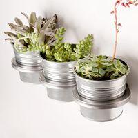Three-Ring Mountable Planter 10