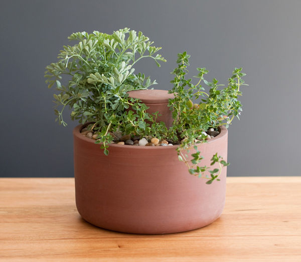 Self-Watering Planter by Joey Roth 4