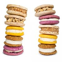 Jeni's Ice Cream Sandwiches – Pack of 10 on Wantist