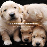 Newborn Puppies: Dogs in Their First Three Weeks on Wantist