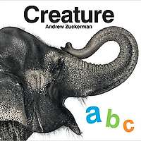 Creature ABC on Wantist