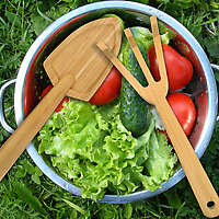 Fred Bamboo Garden Salad Tools with a bowl of salad