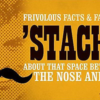 Stache: Stache: Frivolous Facts and Fancies About That Space Between the Nose and Lip Facts & Fancies About That Space Between the Nose and Lip book cover