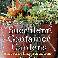 Succulent Container Gardens: Design Eye-Catching Displays with 350 Easy-Care Plants book cover